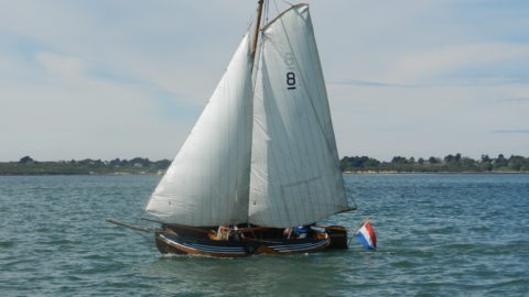 Le Golfe du Morbihan – revue de presse